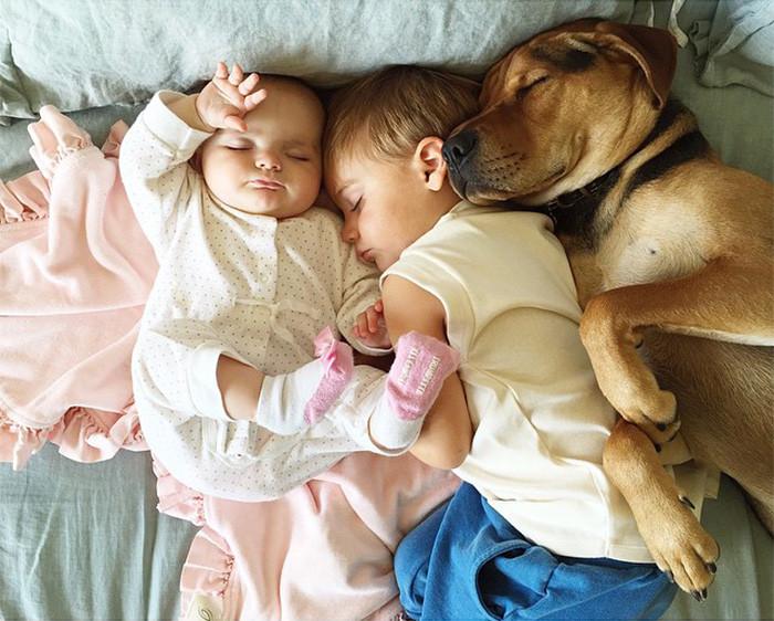 Душечки  дружба, ребенок, собака