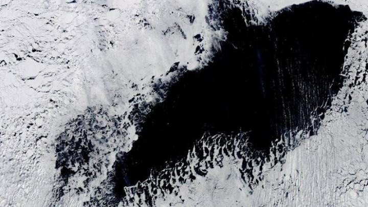 В Антарктиде снова образовал…