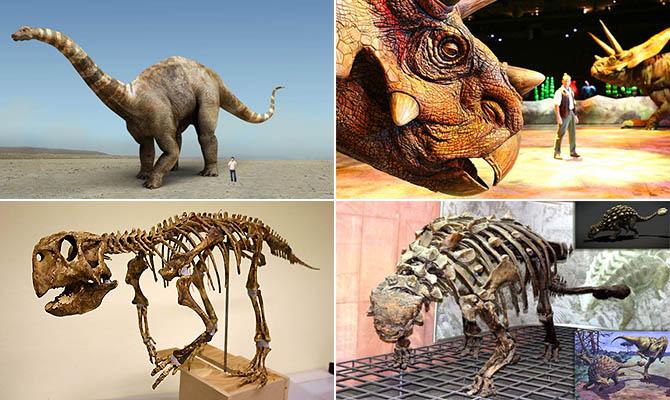 Интересные факты о динозавра…