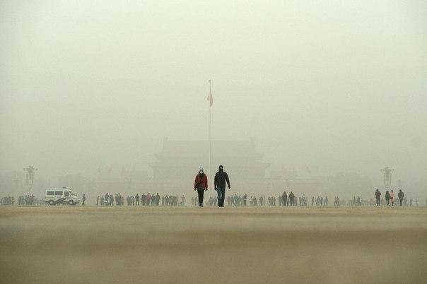 2015 год, люди покупают воздух.