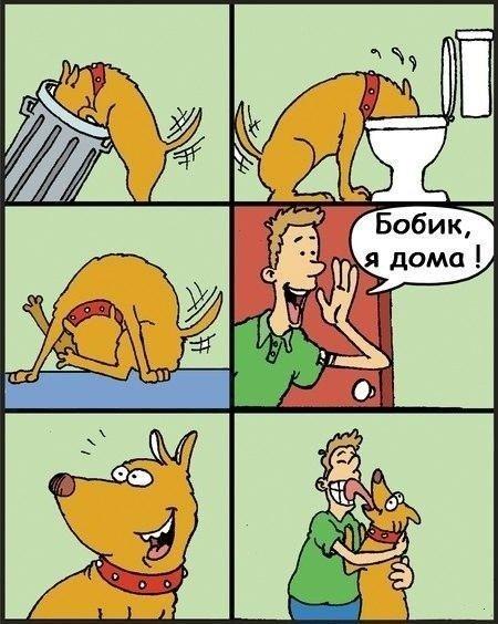Карикатуры для улыбки