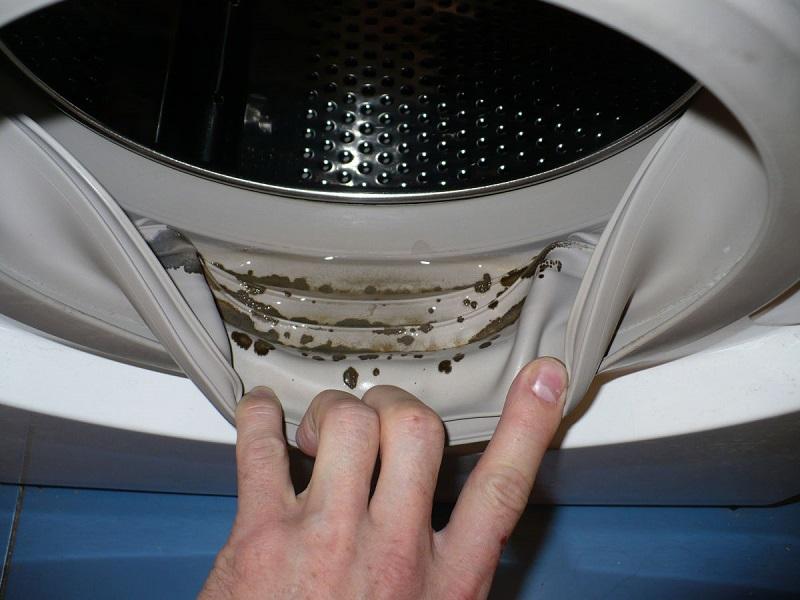 плесень в стиральной машинке