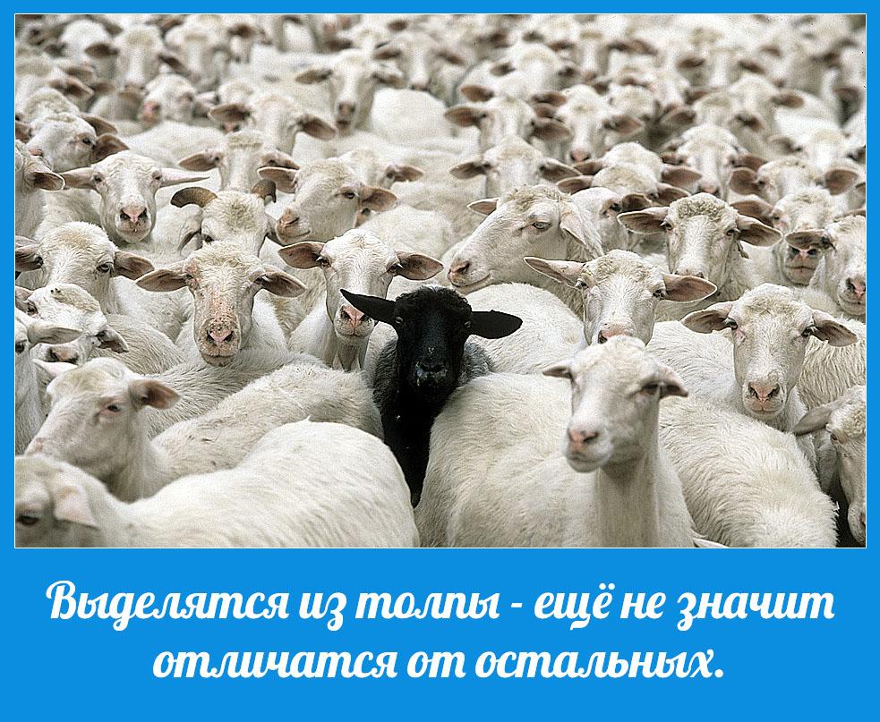 Ложь и обман – способ управления толпой.