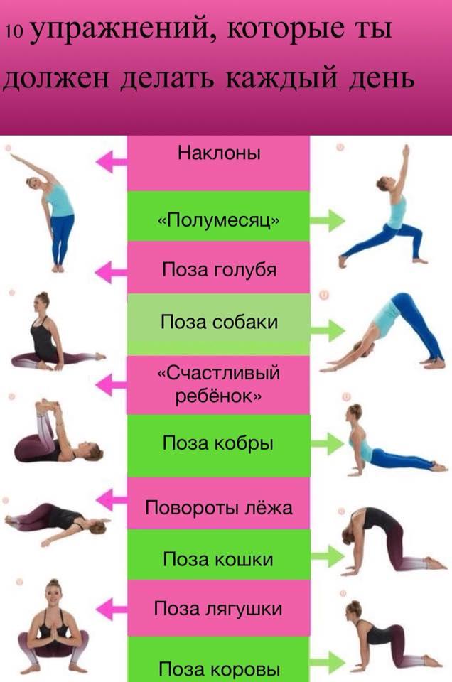 Студия йоги и фитнеса прана