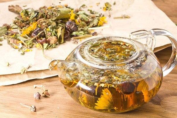 Важные правила травяного чая (604x403, 83Kb)