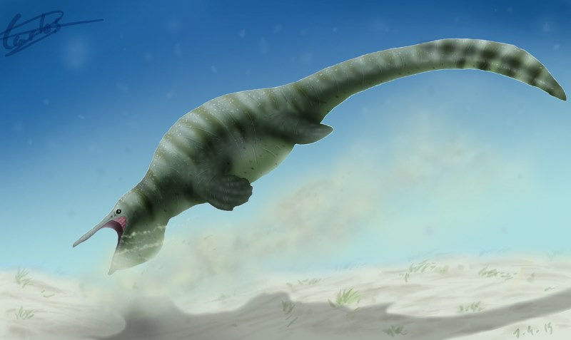 Ученые обнаружили мелкоголового доисторического утконоса