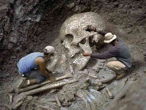 Смитсоновский институт признал, что уничтожил в начале 1900 годов тысячи гигантских человеческих скелетов
