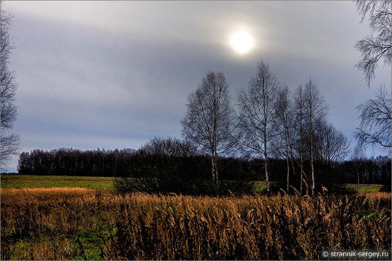 Метаморфозы осеннего дня