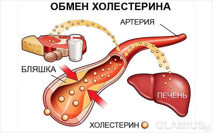 снижение холестерина в крови у женщин