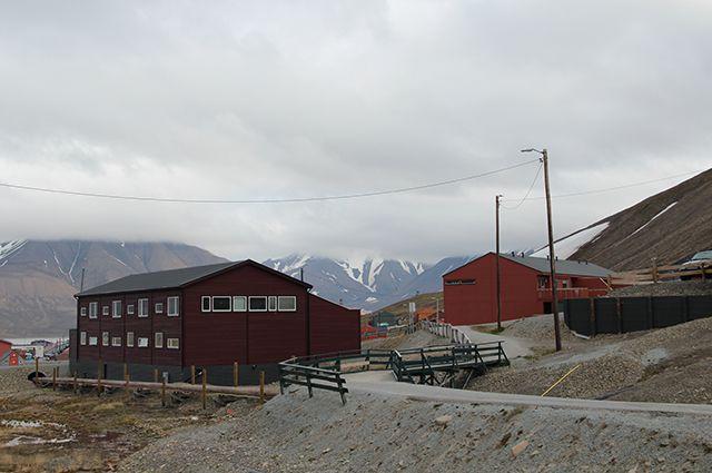 Дело «отмороженных». На Шпицбергене есть и дачники, и парники, и семена