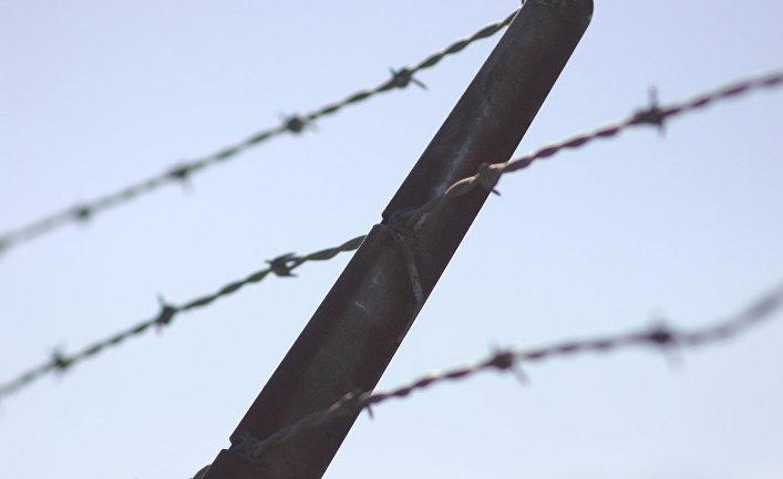 Не шутите с государством:Автор интернет-петиции о присоединении Латвии к России получил реальный тюремный срок (Delfi.lv, Латвия)