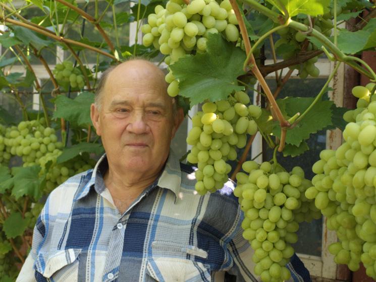Как формировать виноград ?