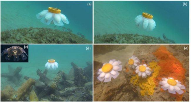 Роботов-медуз отправят на исследование морских глубин