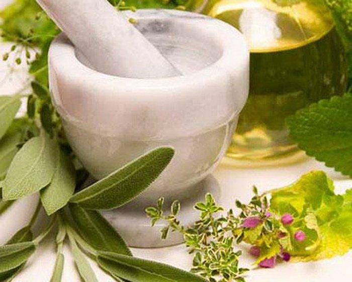 Лекарственные растения при бронхиальной астме