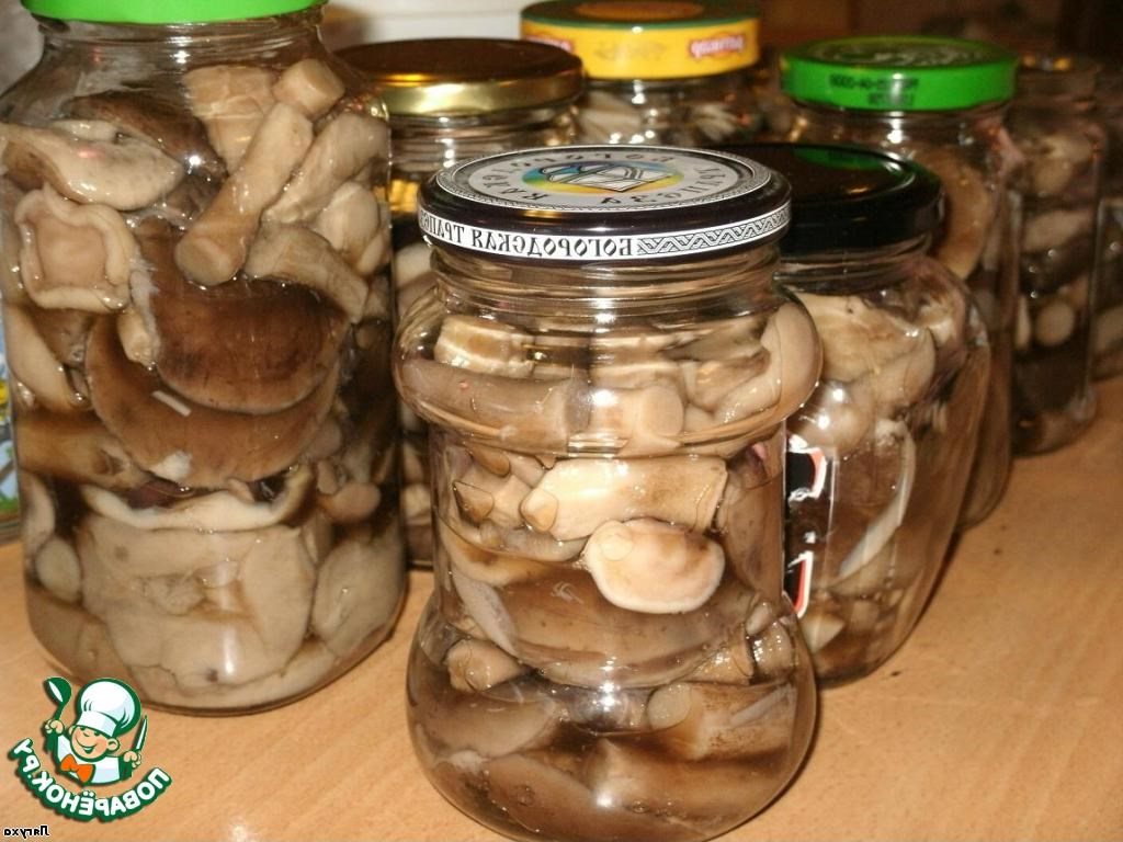 Консервация грибов в домашних условиях