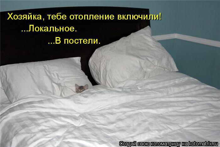 Котоматрица: Хозяйка, тебе отопление включили! ...Локальное. ...В постели.