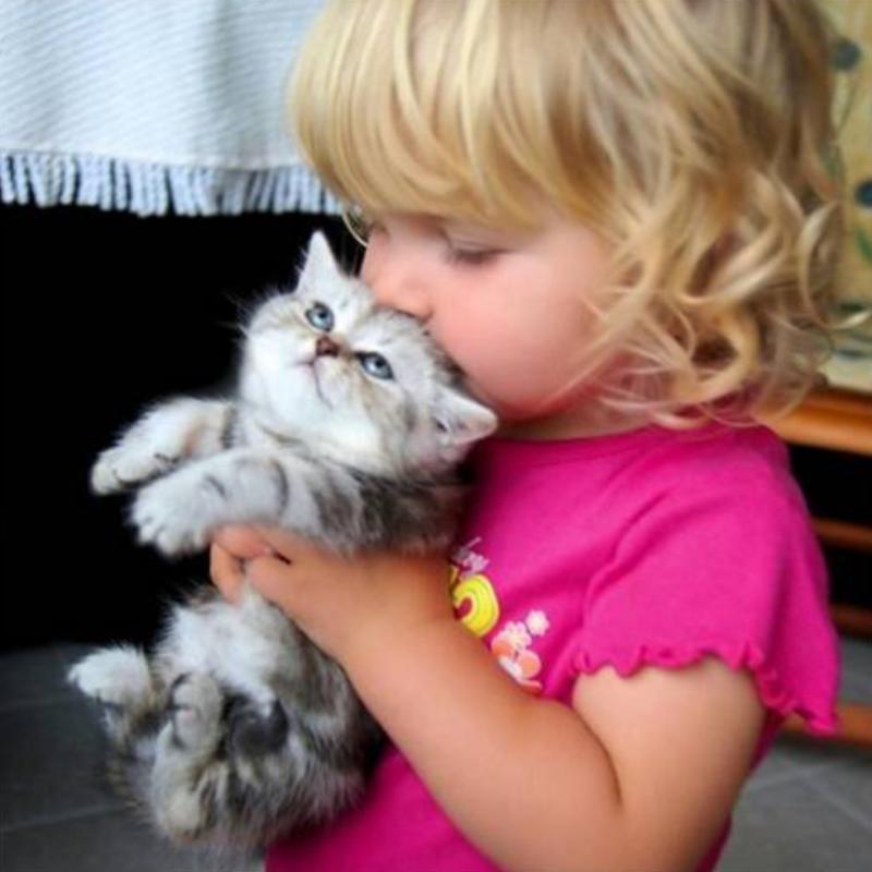 20 фотопримеров трогательной дружбы детей и кошек дети, животные, кот, котенок