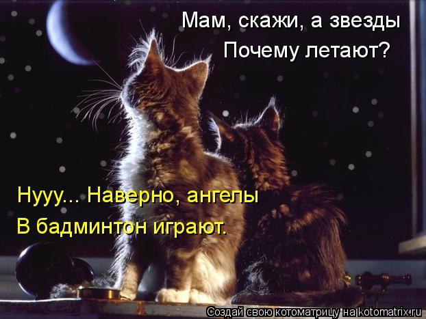 Котоматрица: Мам, скажи, а звезды Почему летают? Нууу... Наверно, ангелы В бадминтон играют.