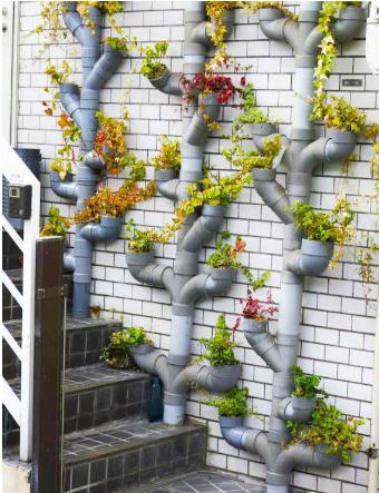 Огород у ворот