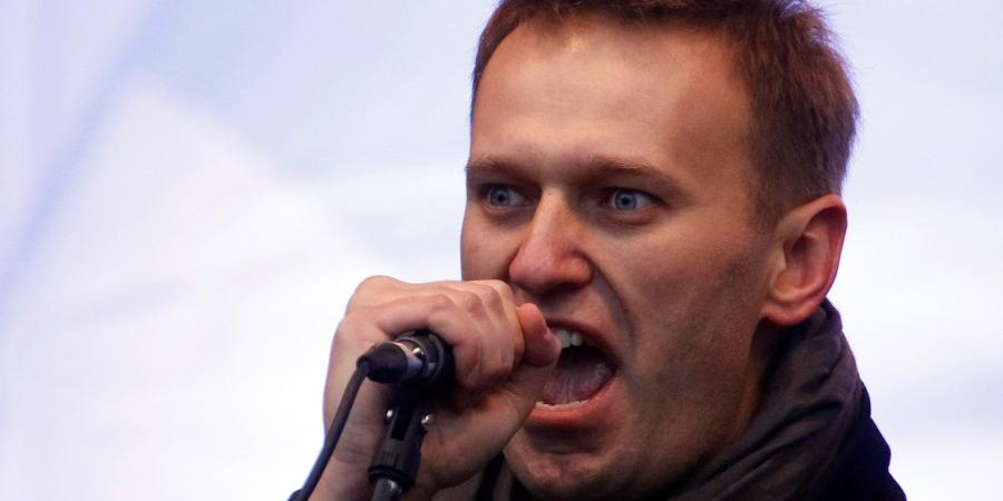 В программе Навального нашли…