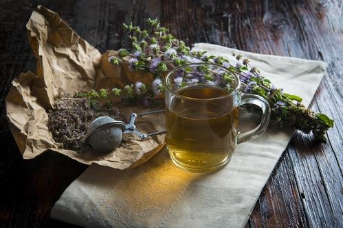 Пей и не болей: осенние травяные сборы для здоровья