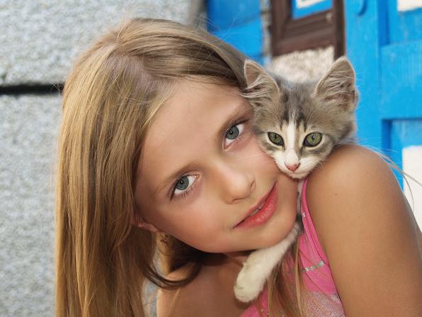 Как узнать, что ваш кот вас любит?