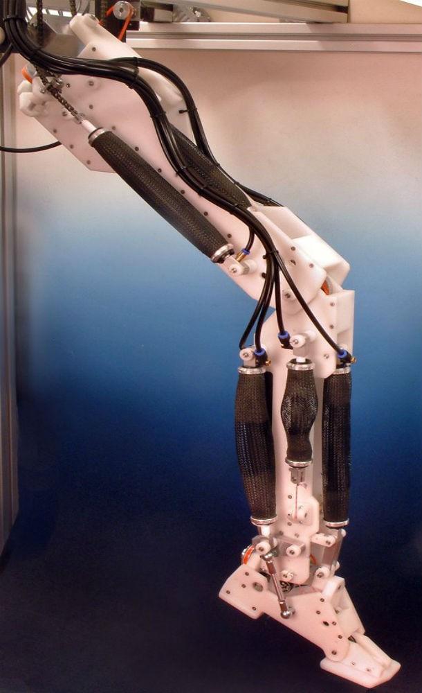 Как сделать робота на двух ногах своими руками