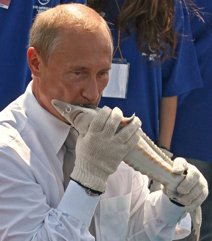 Чёрная икра не подешевеет! От 40 000 рублей за кило