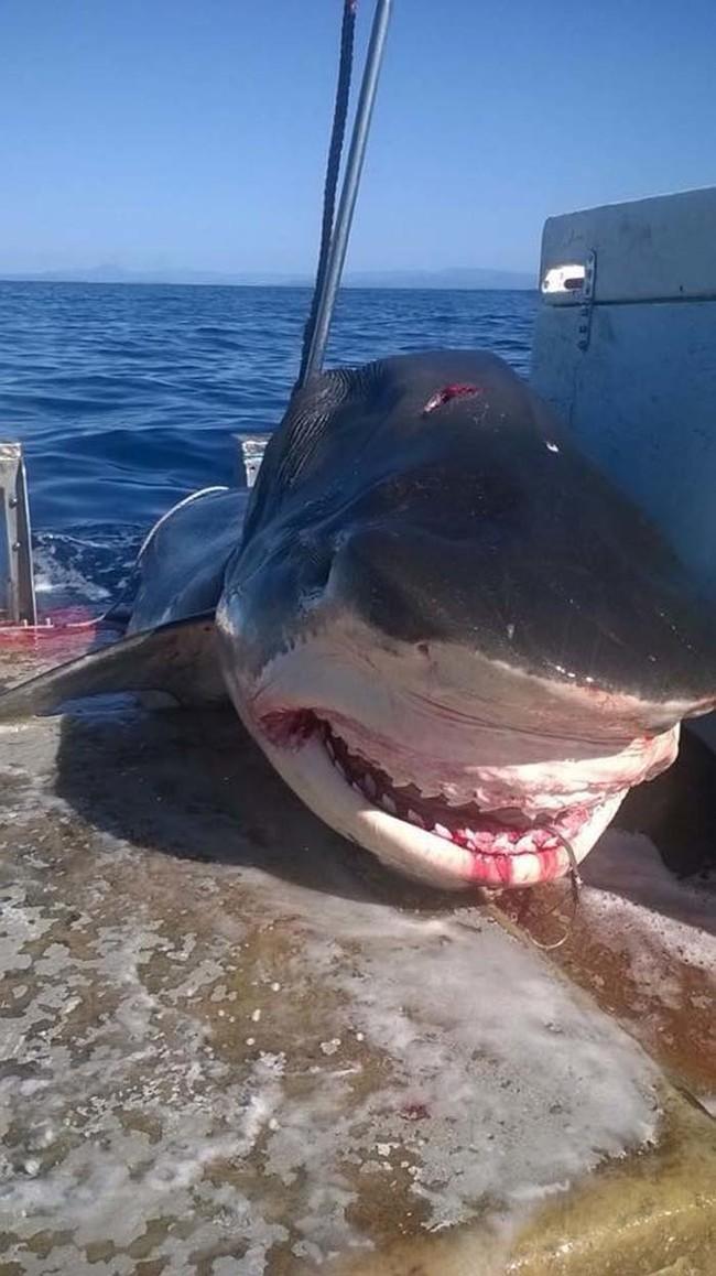 Этот рыбак рассчитывал на хороший улов, но пойманная добыча привела его в ужас...