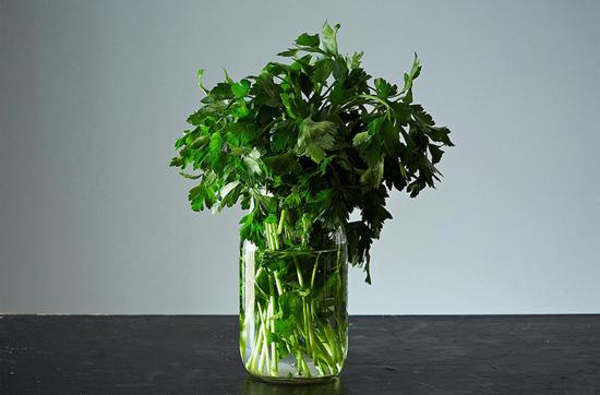 Лучшие способы сохранить зелень свежей