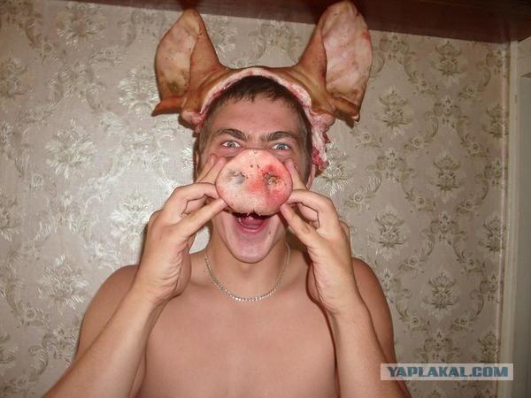 Свиньи в человеческом обличье
