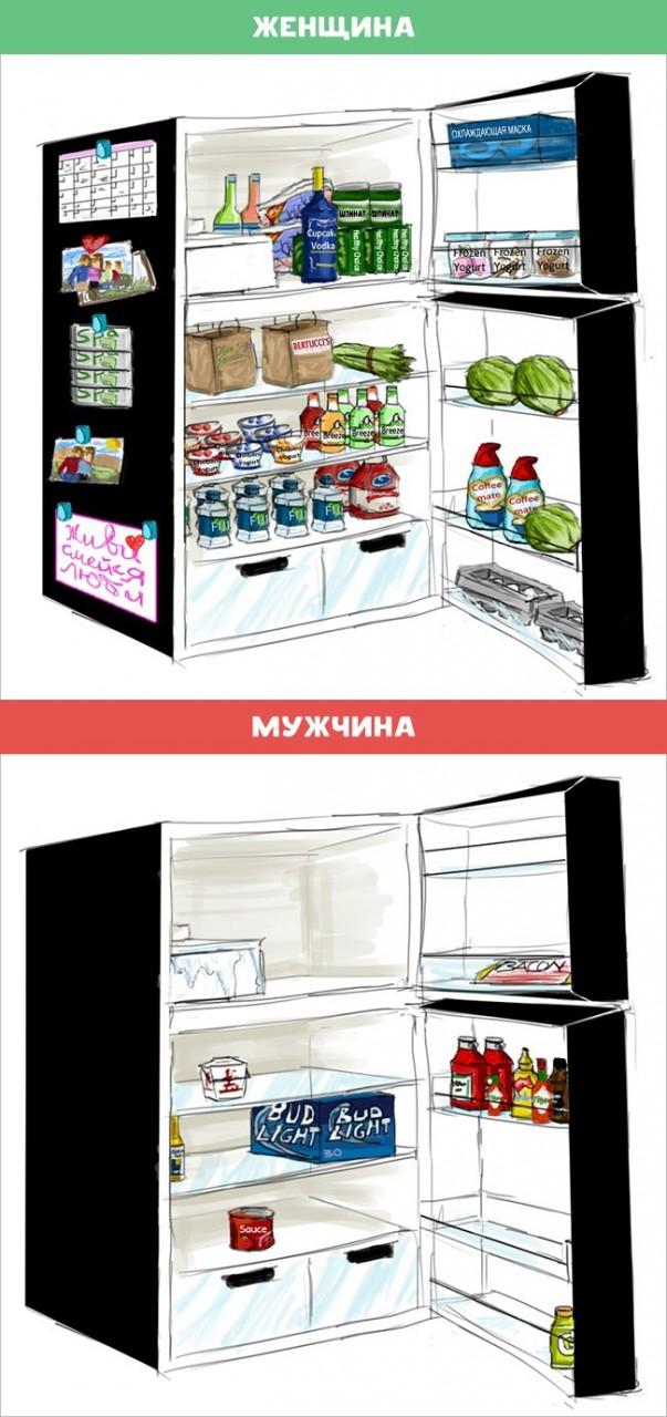 Холодильник женщина, мужчина, различия