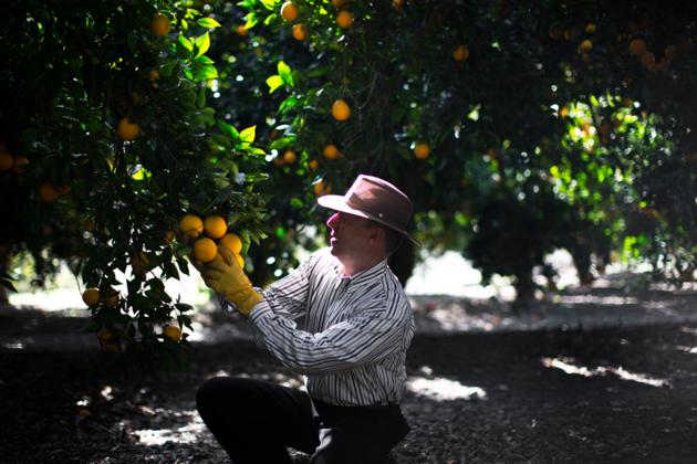 Как внук украинского мигранта стал главным фермером США