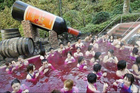 Бассейн наполненный вином. Билет в Японию, пожалуйста! в мире, люди, прикол, япония