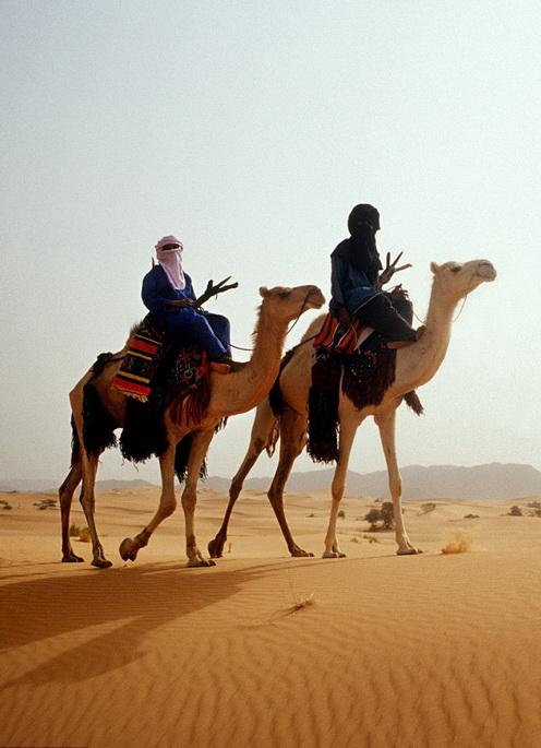 Туареги - африканский кочевой народ