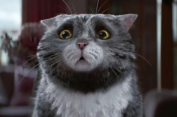 Рождественская история неудачливого кота Мога