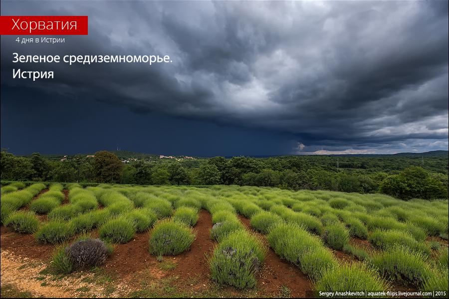 Зеленое средиземноморье. Истрия