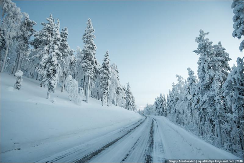 Что не так с финскими дорогами? Жизнь в путешествиях, дороги в Финляндии, природа