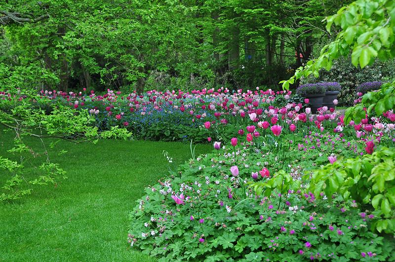 Нежной зеленью, цветами нарядился парк