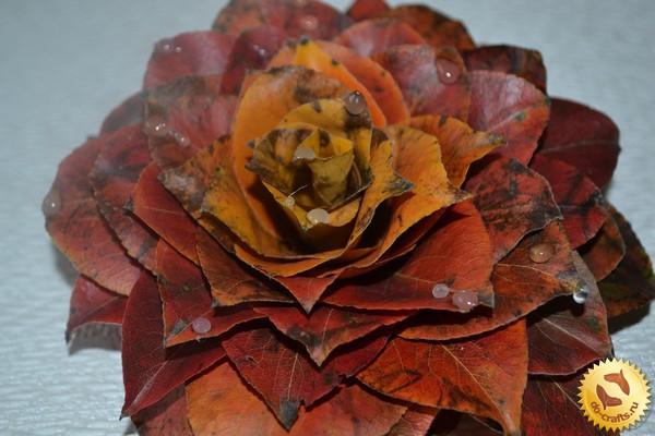 Поделка цветов из природного материала своими руками