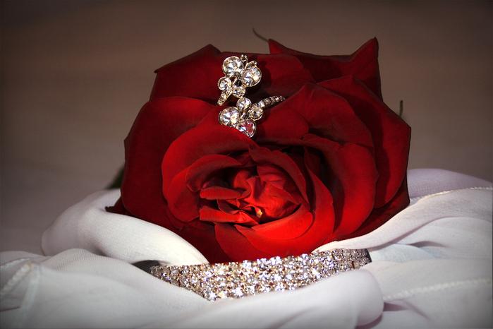 Фото цветы красивые букеты на аватарку