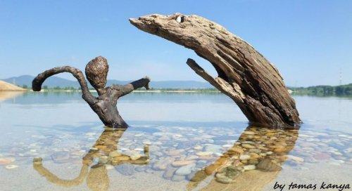 Деревянные скульптуры, созда…