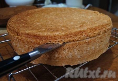 рецепты бисквитных тортов с кремом с фото