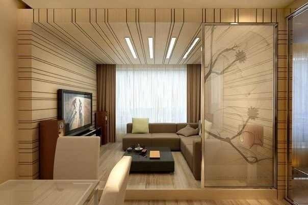 Интерьер гостиной в студии с декоративной перегородкой