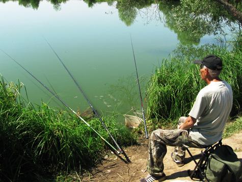 рыбалка с резиновым амортизатором видео