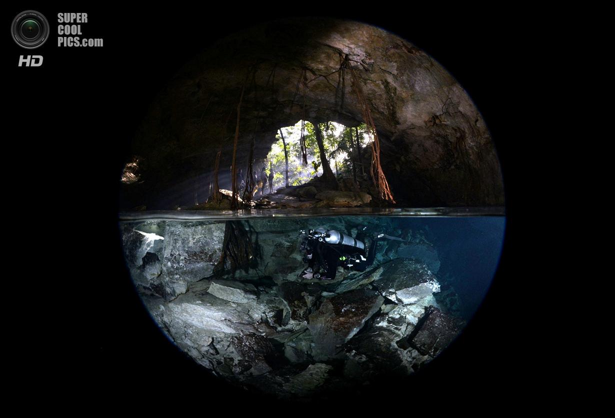 Категория: Over/Under. 1 место. (Uwe Schmolke/UnderwaterPhotography.com)
