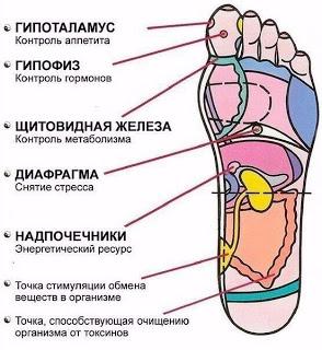 Рефлексология стопы: 7 активных точек