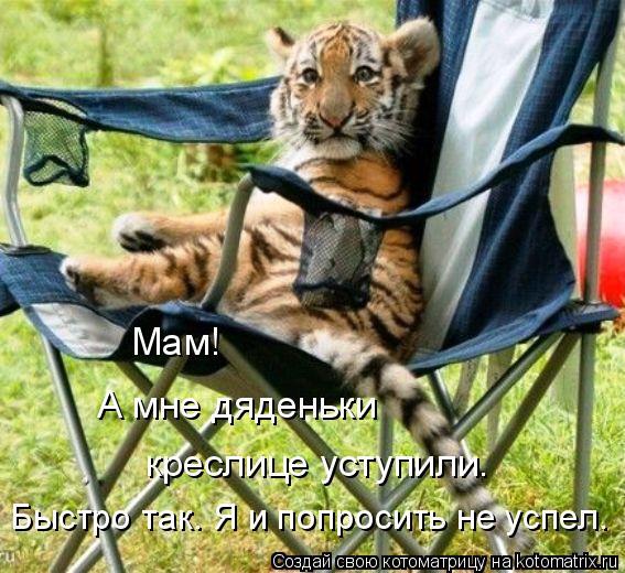 Котоматрица: Мам!  А мне дяденьки  креслице уступили. Быстро так. Я и попросить не успел.