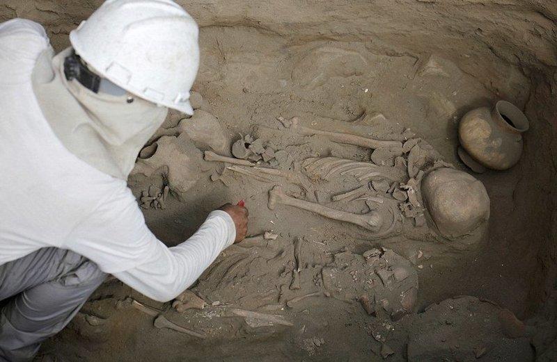 Археологи обнаружили останки…