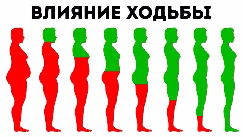 6 вещей, которые происходят с вашим телом, если вы ходите каждый день